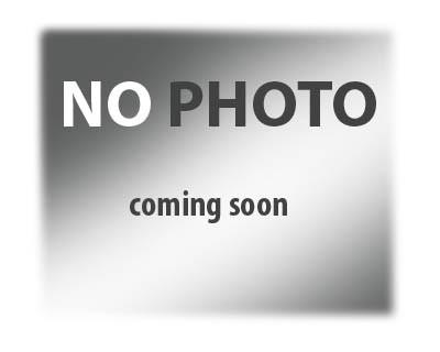 Хна иранская бесцветная 25гр